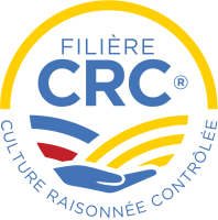 logo-sans-baseline